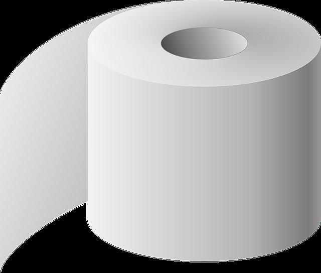 Toiletpaper1133884_640
