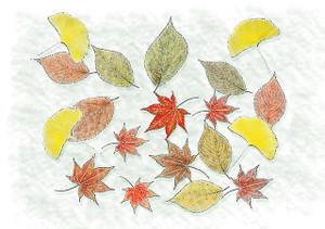Autumn1251680_640_2